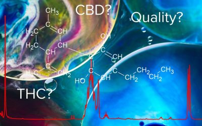 To CBD, or not to CBD, that is the question
